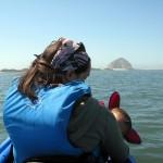 Skirting Morrow Bay's tidal zone.