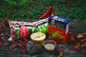 Supplies needed to create pinecone bird feeder